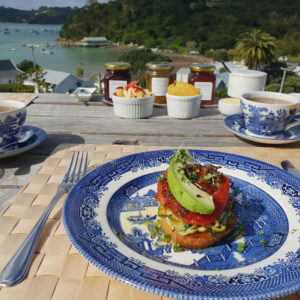 bed and breakfast option bay of islands nz
