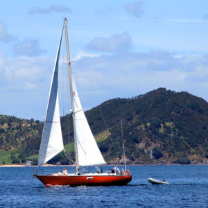 Water Activities in Russell and the Bay of Islands